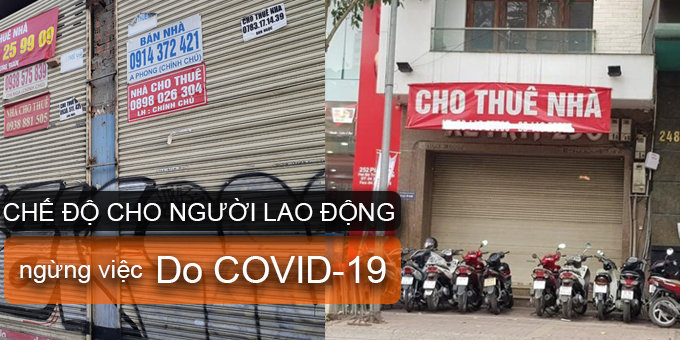 lao-dong-covid19