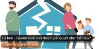 (Tiếng Việt) Ly hôn – Quyền nuôi con được giải quyết như thế nào?