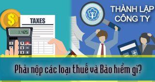 (Tiếng Việt) Phải nộp các loại thuế và bảo hiểm gì khi thành lập công ty?
