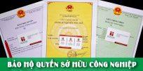 (Tiếng Việt) Bảo hộ quyền sở hữu công nghiệp