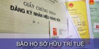 (Tiếng Việt) Bảo hộ sở hữu trí tuệ
