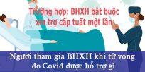 (Tiếng Việt) Người tham gia BHXH khi tử vong do Covid19 được hỗ trợ gì?(áp dụng với trường hợp BHXH bắt buộc xin trợ cấp tuất một lần)