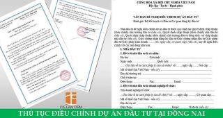 (Tiếng Việt) Thủ tục điều chỉnh dự án đầu tư tại Đồng Nai