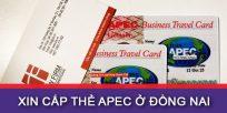 (Tiếng Việt) Hướng dẫn xin cấp thẻ Apec ở Đồng Nai