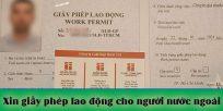 (Tiếng Việt) Thủ tục xin Giấy phép lao động cho người nước ngoài