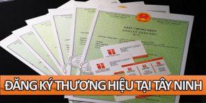 Đăng ký bảo hộ thương hiệu tại Tây Ninh