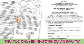 (Tiếng Việt) Thủ tục chuyển nhượng dự án đầu tư