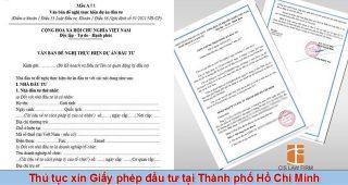 (Tiếng Việt) Thủ tục xin giấy phép đầu tư tại Thành phố Hồ Chí Minh