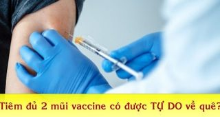 (Tiếng Việt) TP.HCM: Tiêm đủ 2 mũi vắc-xin được tự do về quê không?