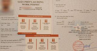 (Tiếng Việt) Dịch vụ làm Work permit tại TP.HCM